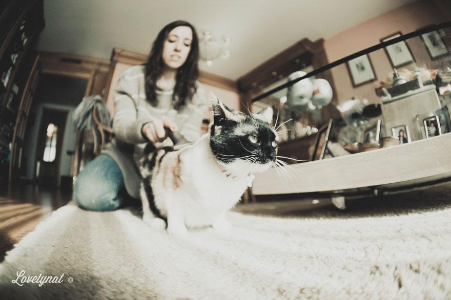 Pets_Lulu_Lovelynat-Photography_060-(1)