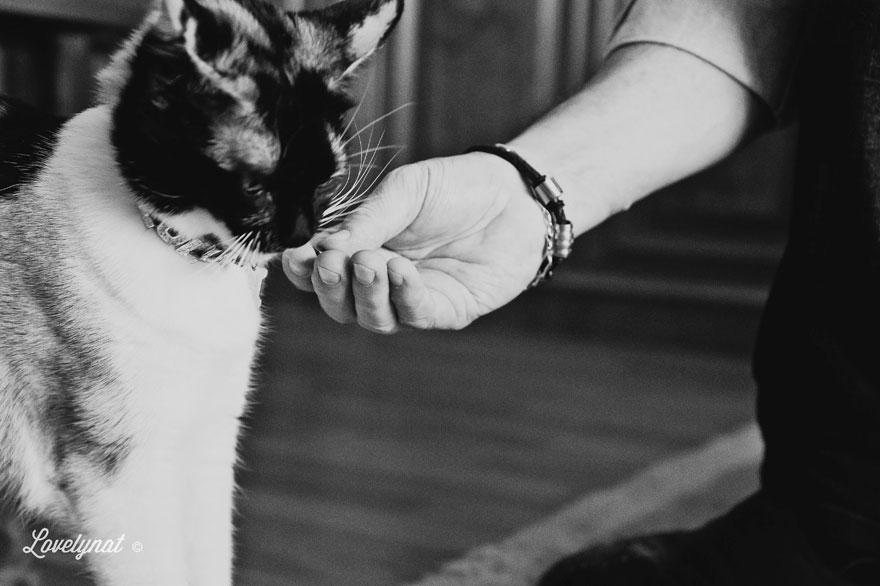 Pets_Lulu_Lovelynat-Photography_124