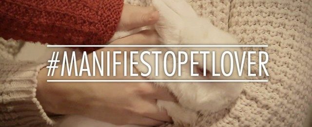 Animalvitae #manifiestopetlover