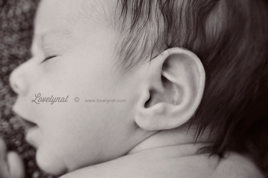 Babies_EvaT_Lovelynat-Photography_13